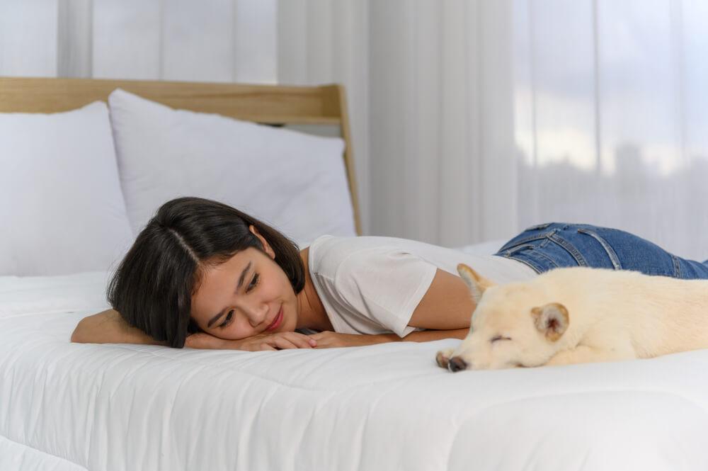 Cachorro deitado na cama, ao lado de uma mulher asiática.